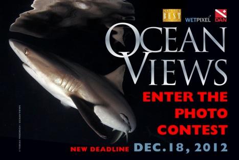 Ocean Views Entry Form