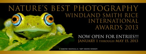 2013NBP_WSRAwards_ContestDeadline