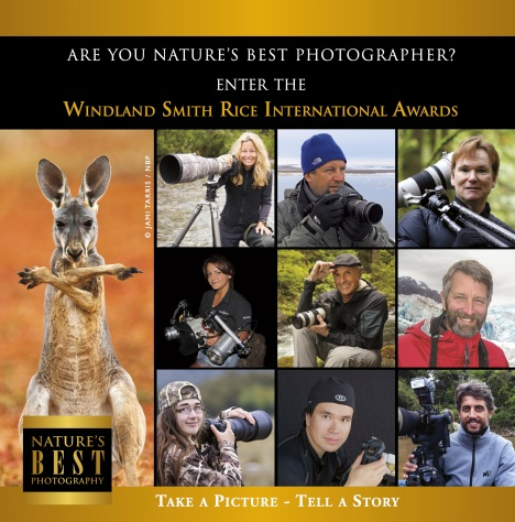 CALL FOR ENTRIES: The 2014 Windland Smith Rice International Awards is NOW open. Click Here to go to the entry form.Start an entry page early to be judged first! You will have until May 1, 2014, to complete your uploads. For each entry fee of $25 US dollars, you may enter a total of 20 images. You may start as many entry pages as you like for $25 each. Entries are judged on technical quality, originality, and artistic merit. Follow the guidelines, rules, and categories listed on: www.NaturesBestPhotography.com Finalists will be published in Nature's Best Photography and Alert Diver magazines and featured in online galleries. The category Winners and a selection of Highly Honored photographs will be displayed in the annual Awards Exhibition at the Smithsonian's National Museum of Natural History in Washington, DC, one of the most widely respected and highly visited museums in the world.
